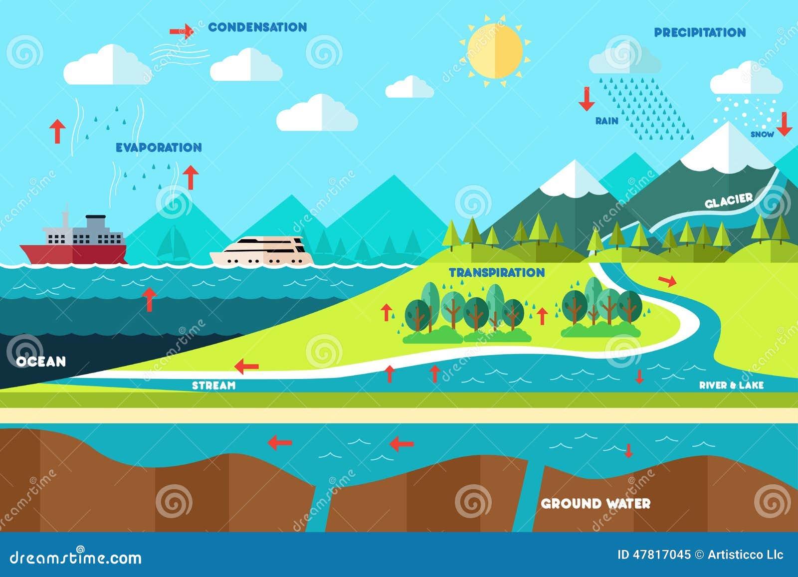 Wodna cykl ilustracja