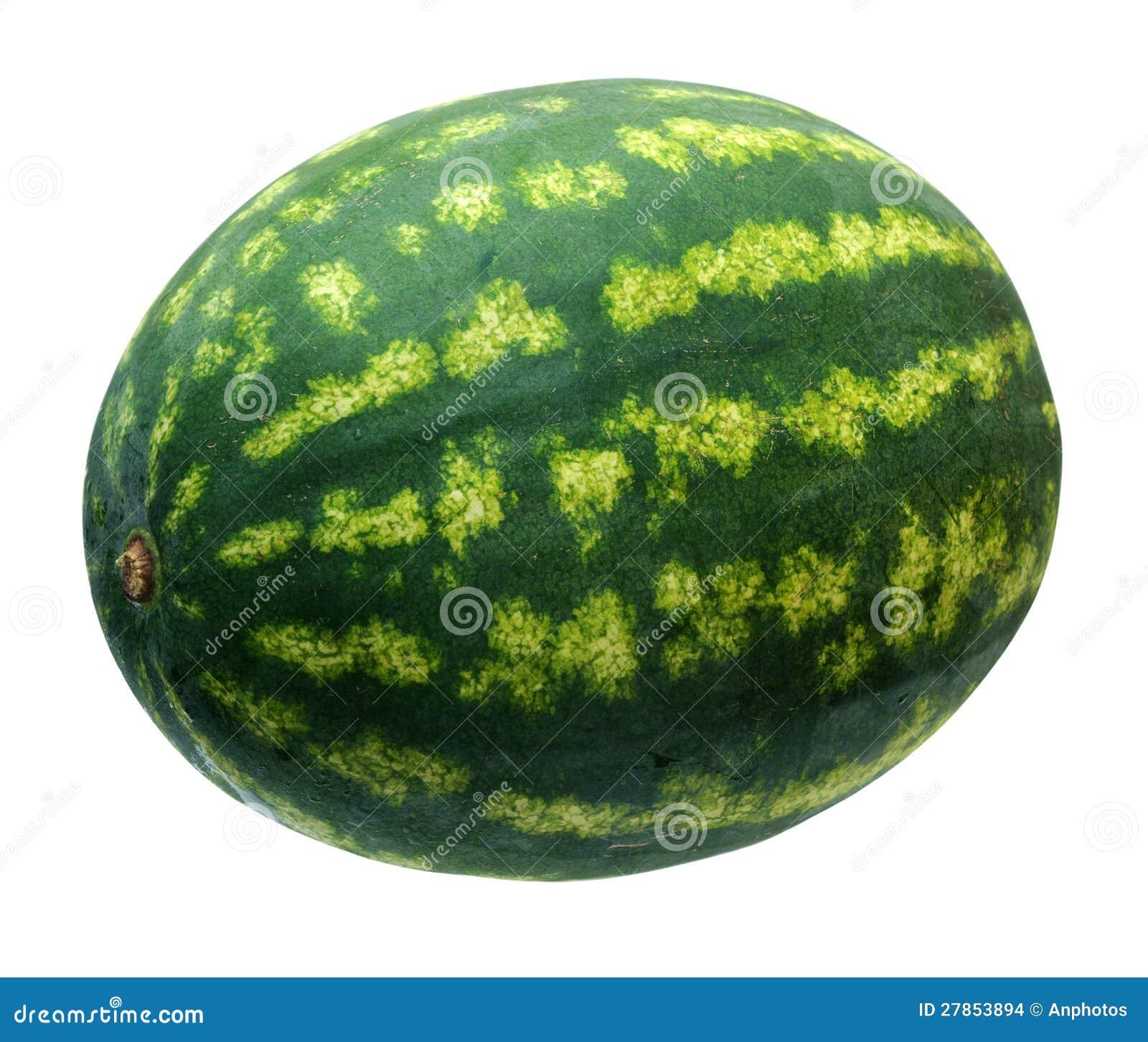 Wodny melon