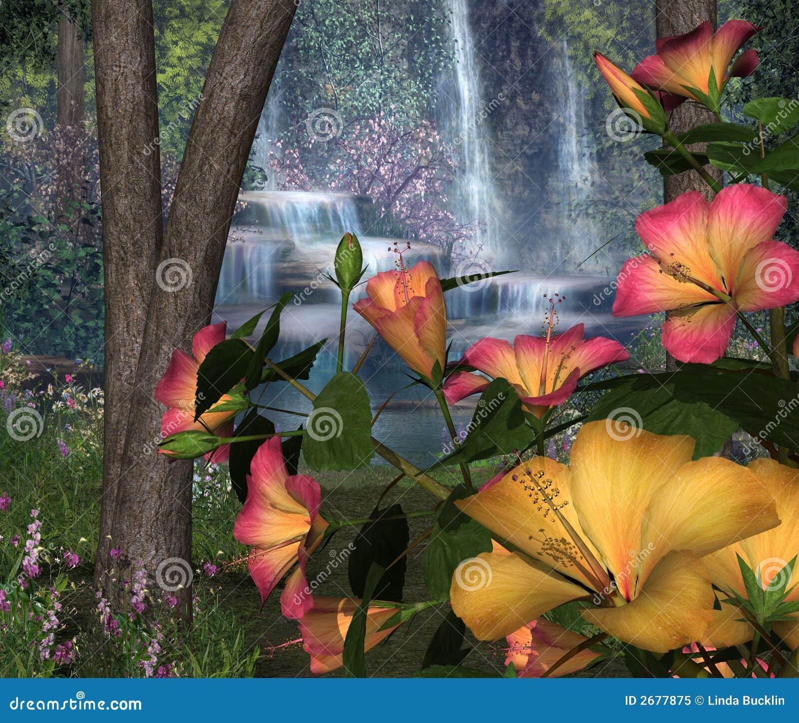 wodospady hibiskus