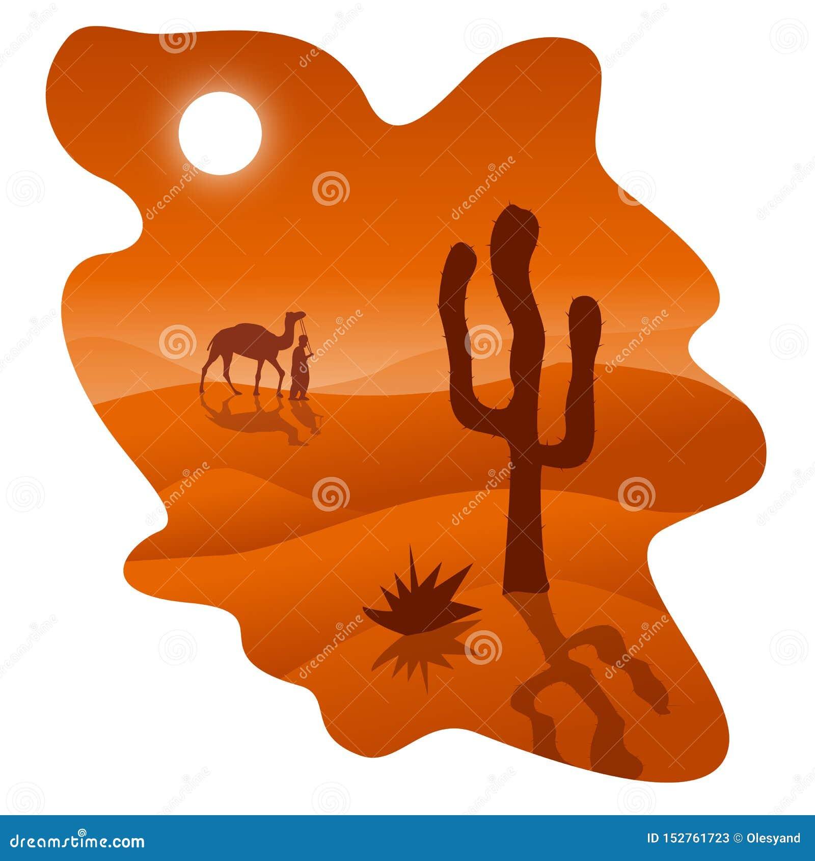 Woestijn met kameel en cactus