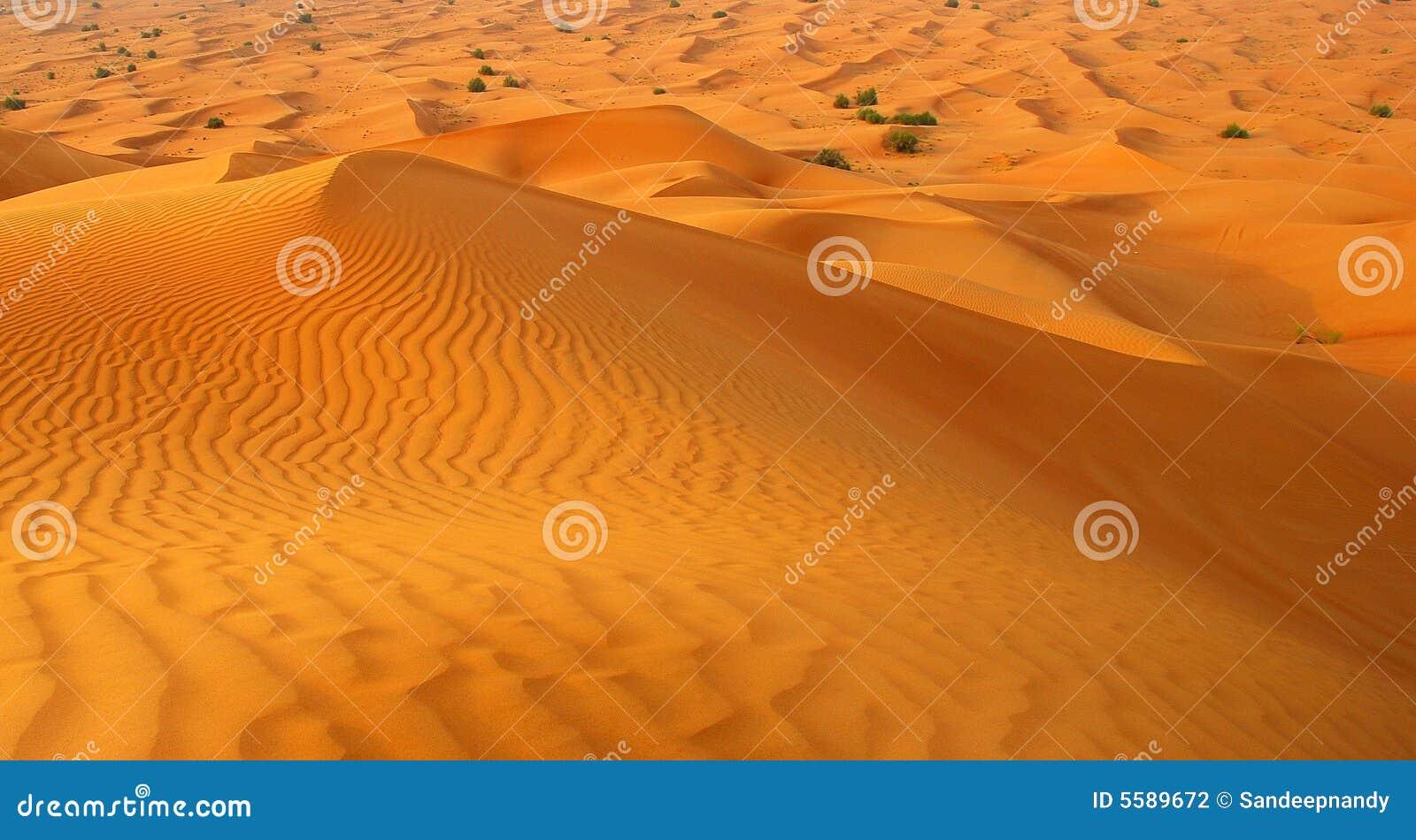 Woestijn rond Stad Doubai