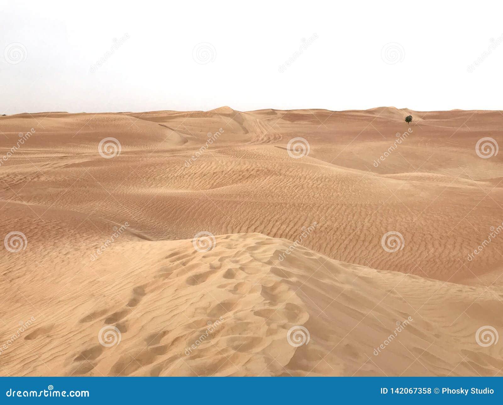 Woestijnoneffenheid Al Khali, Verenigde Arabische Emiraten, Doubai