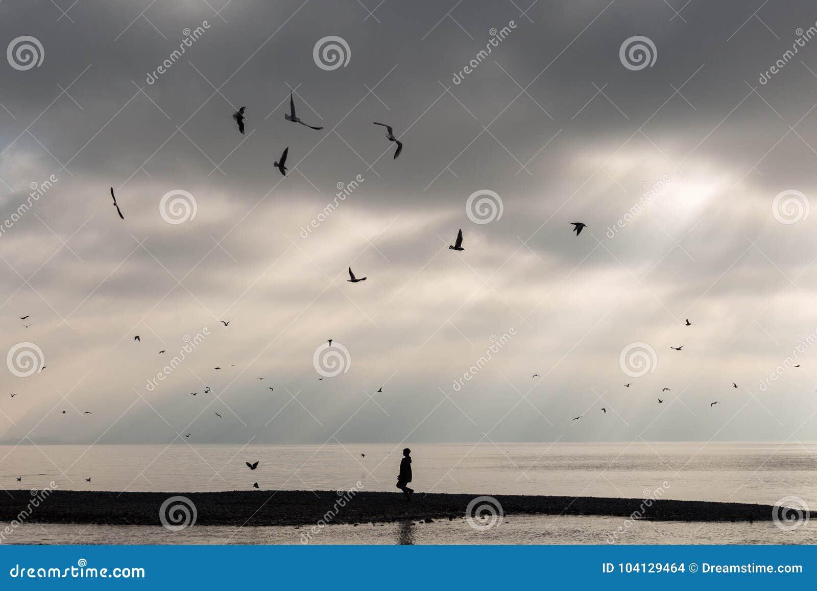 Woestijnstrand op zonsondergang met eenzame vreemdeling en vogels