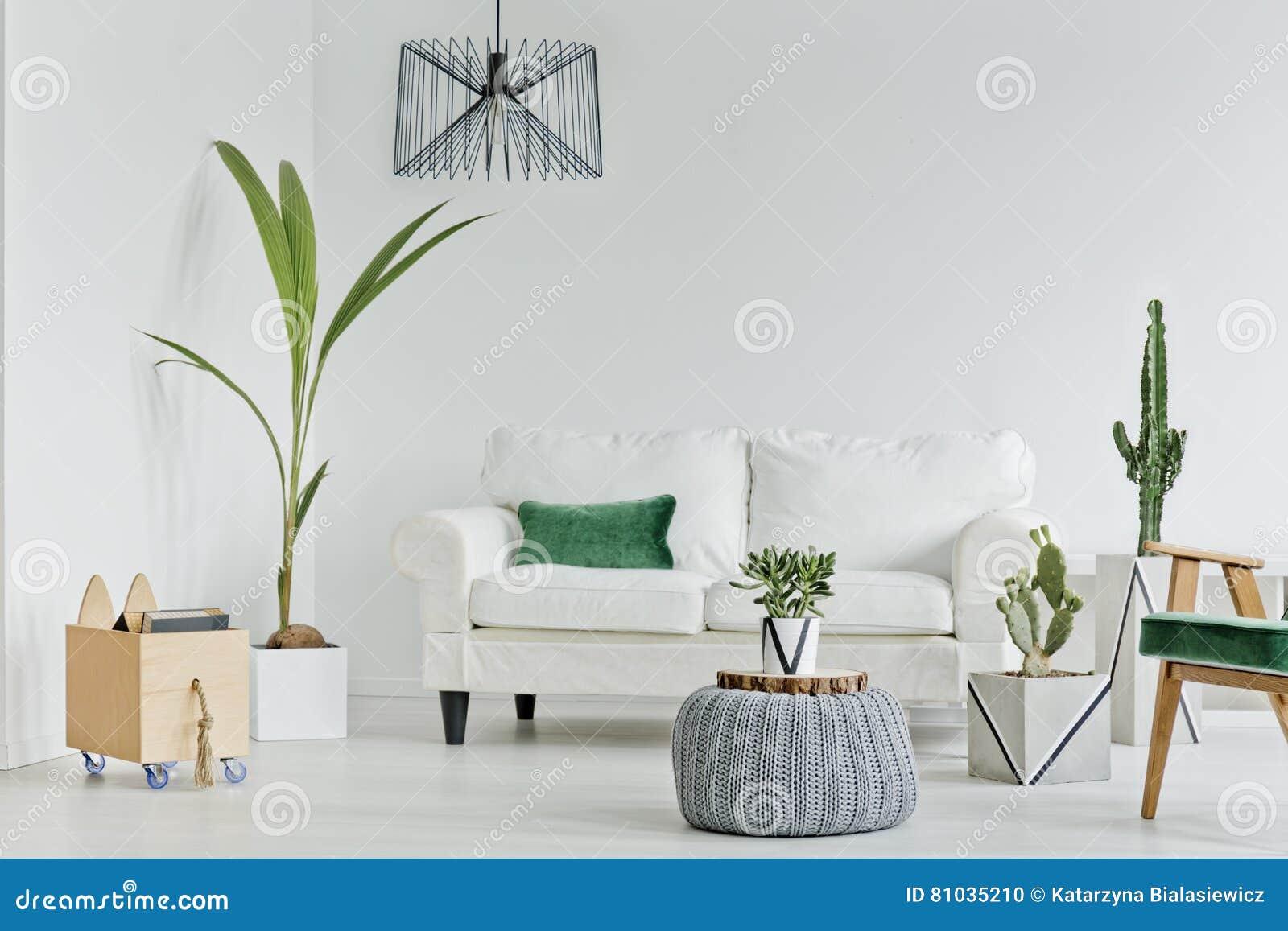 Wohnzimmer Mit Dekorativen Houseplants Stockfoto - Bild von haupt ...
