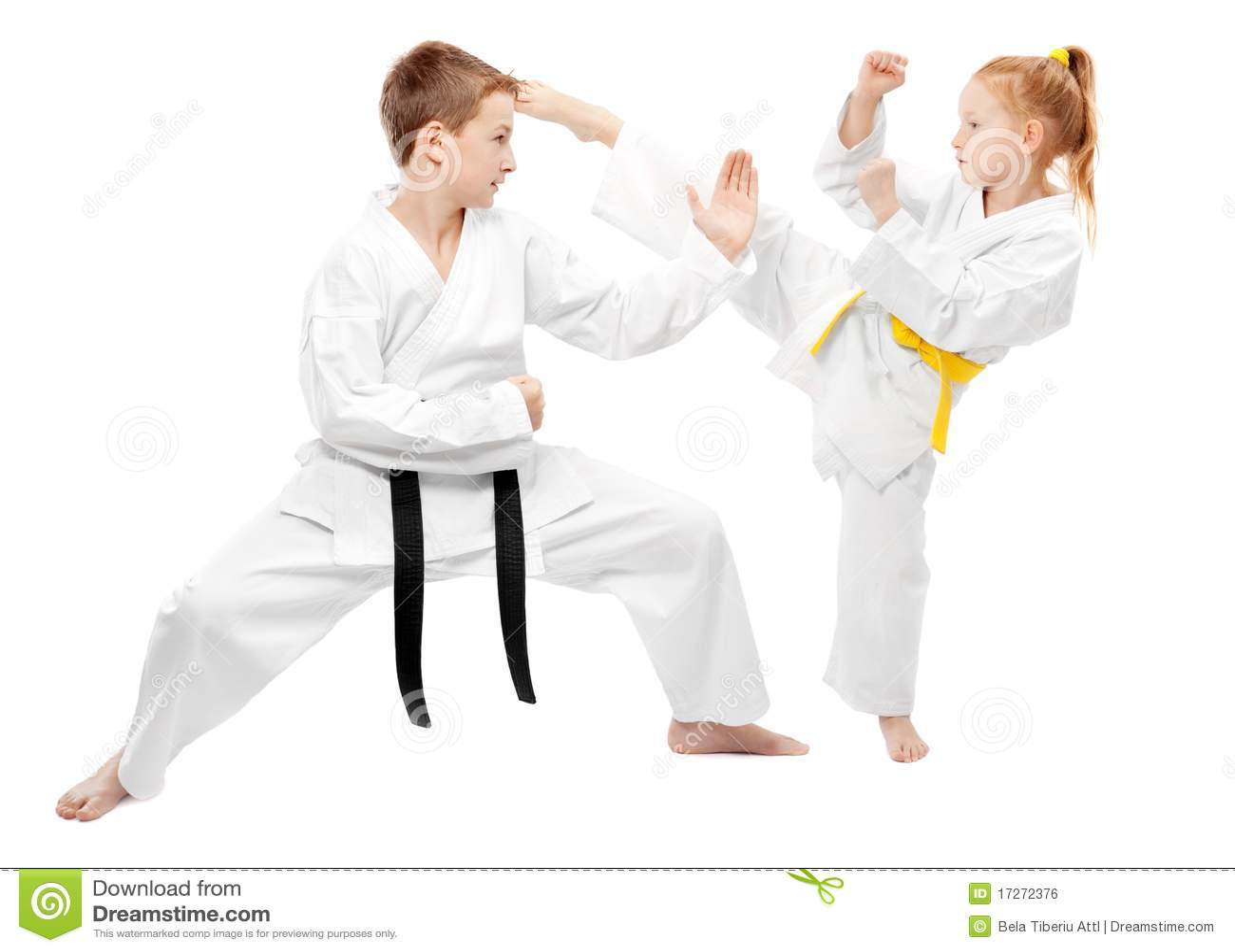 Wojenny sztuka sparring