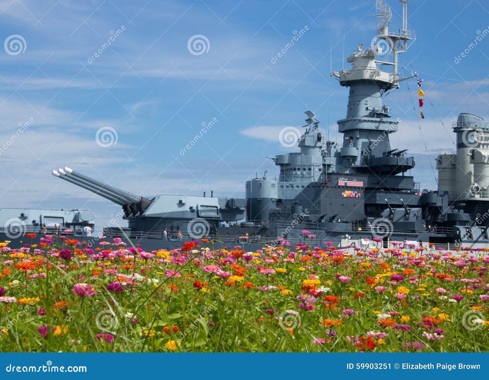 Wojna w Wildflowers