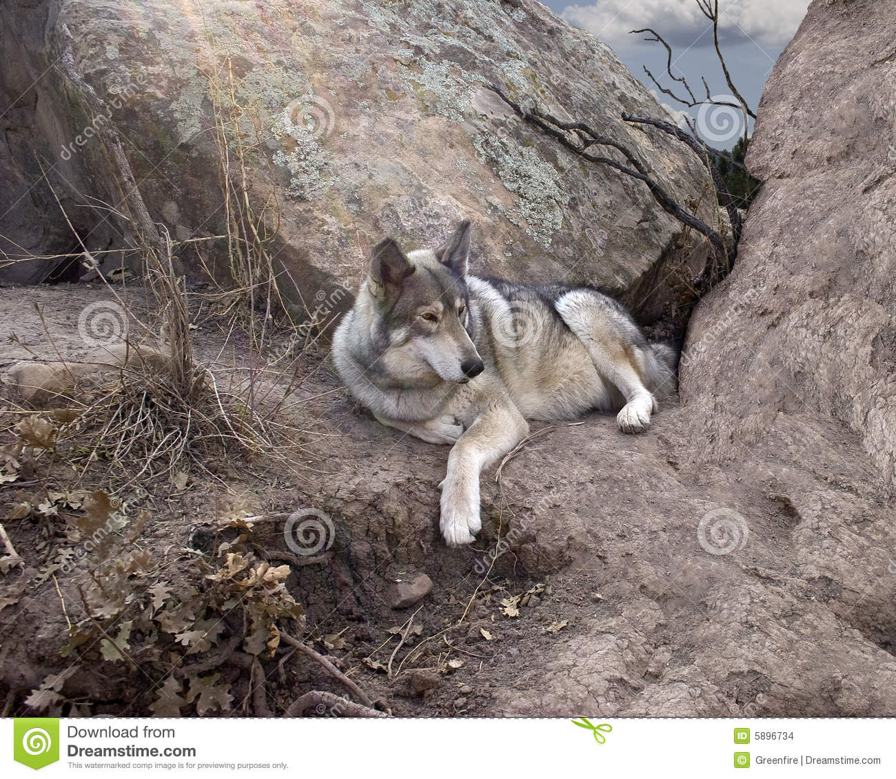 how to make a wolf den