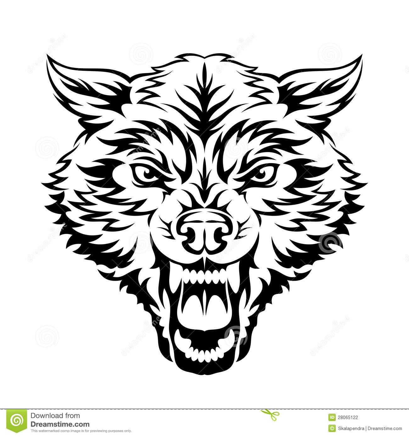 Wolf Head Photo Al Collection How To Draw A Wolf Head Side View Howtodraw