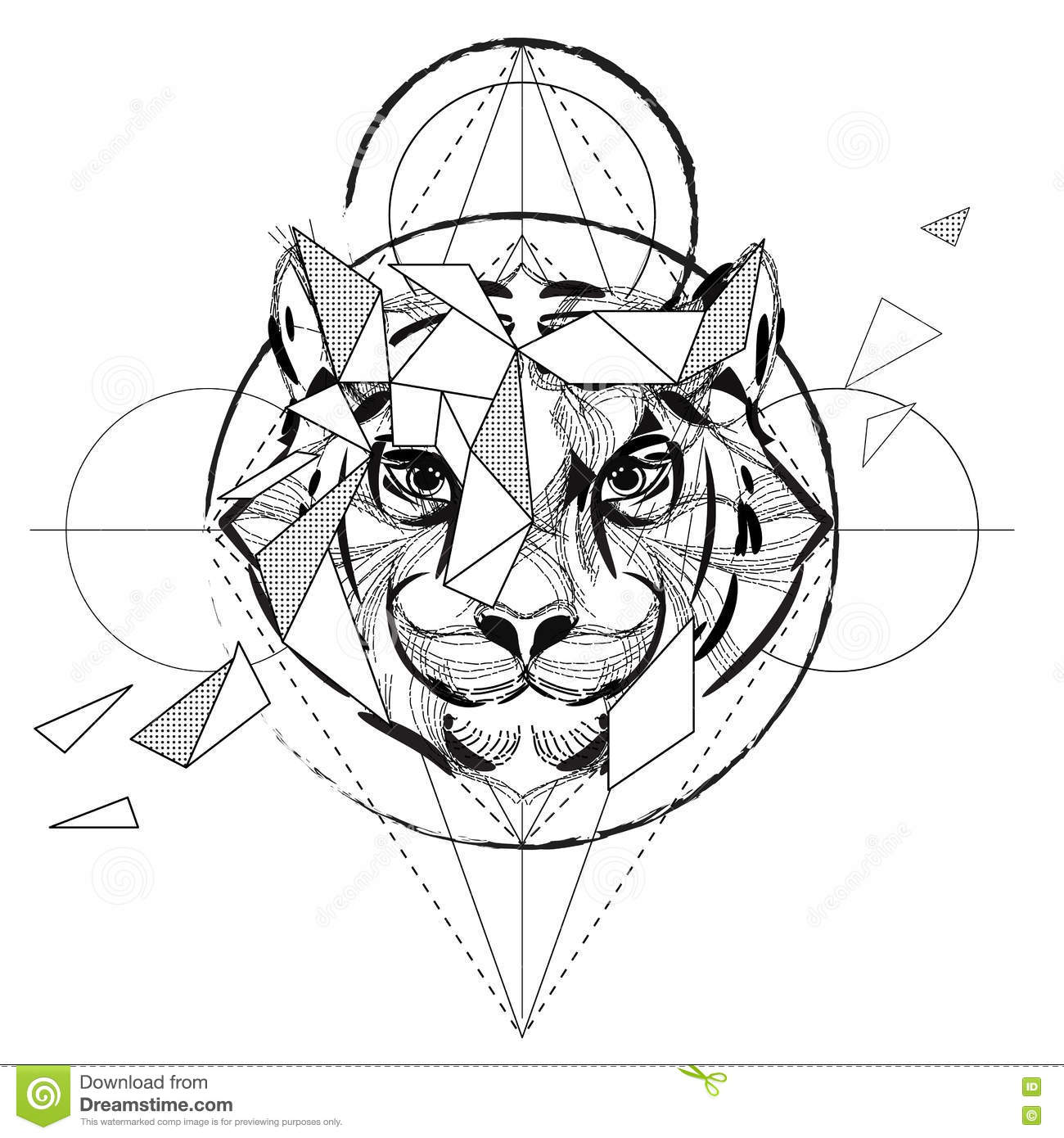 Tiger head triangular icon geometric trendy stock vector image - Wolf Head Low Poly Sketch Royalty Free Stock Photos