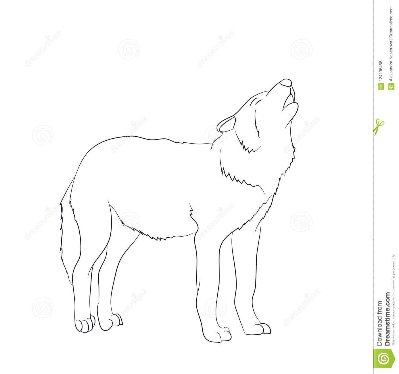 Wolf Howls Image Lines Vector Stock Vector Illustration Of
