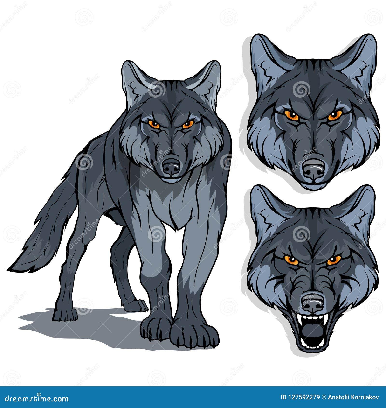 Wolf, op witte achtergrond, kleurenillustratie wordt geïsoleerd, geschikt als embleem of teammascotte, gevaarlijk bosroofdier, wo
