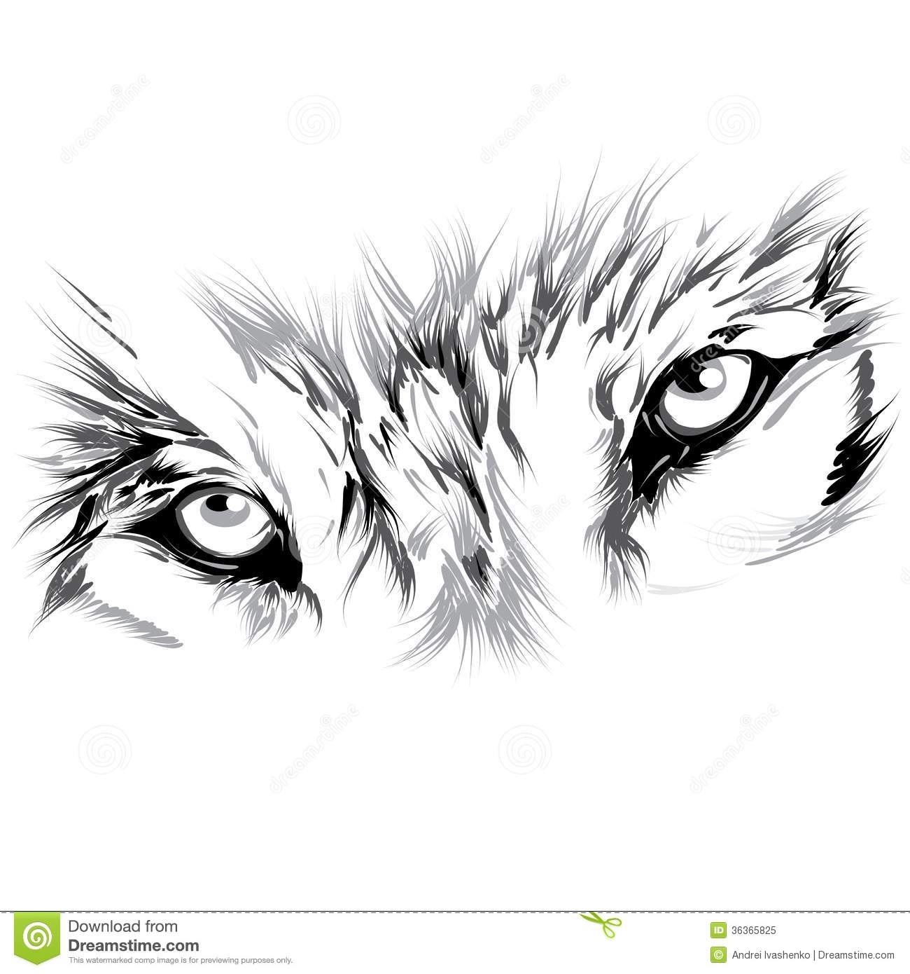 wolfs face royalty free stock photo image 36365825 Black and White Cat and Dog Clip Art Black and White Cat and Dog Clip Art