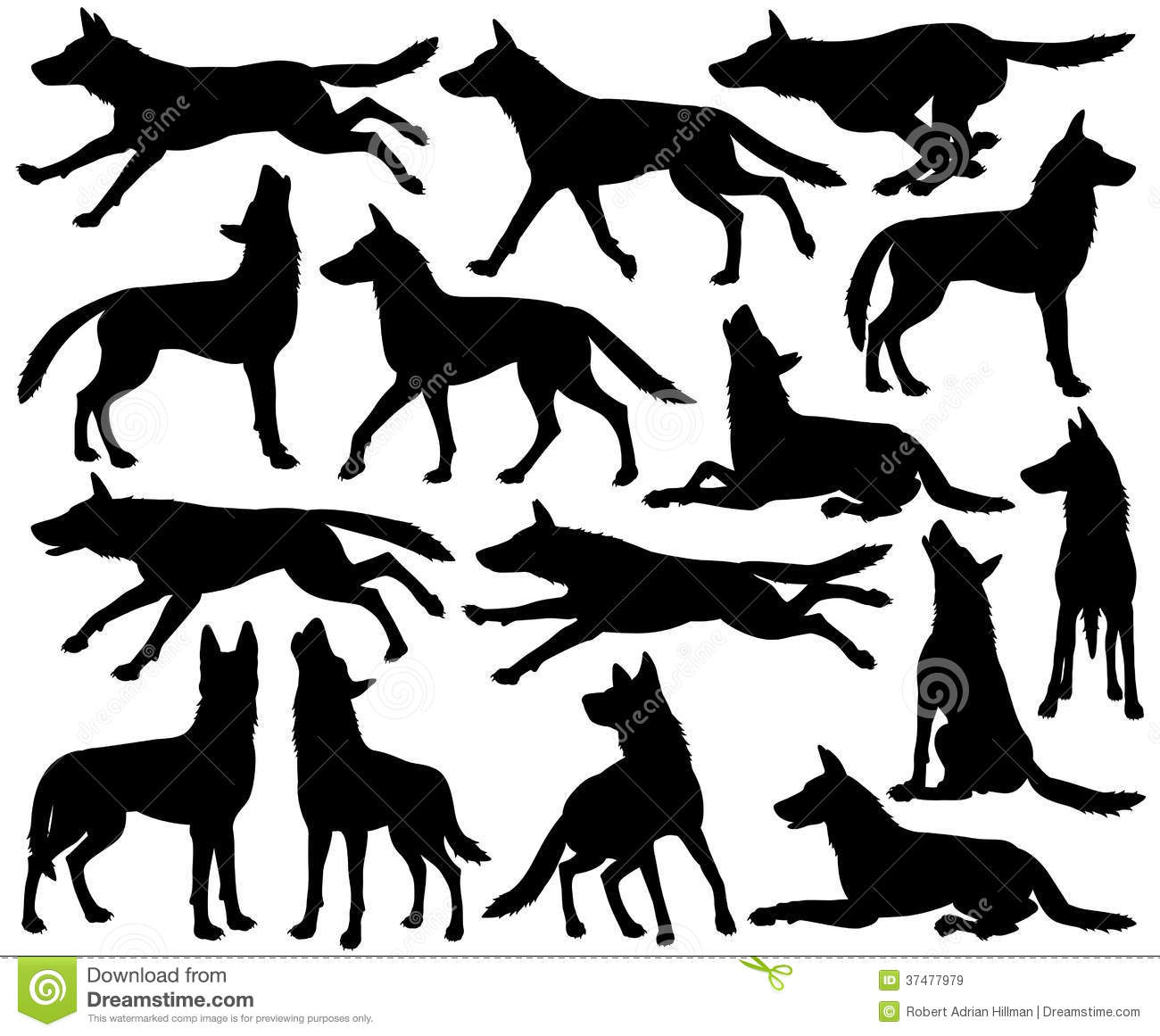 Set of editable vector silhouettes of wolves in different poses.