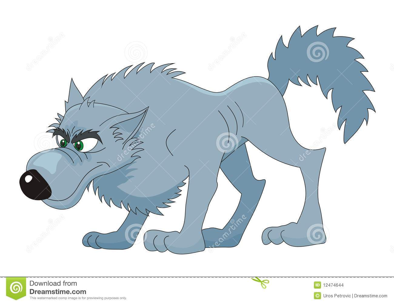 The grey wolf or gray wolf canis lupus often known simply as wolf is