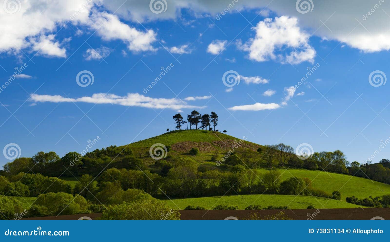 Wolken over de boom bedekte Heuvel van Colmer, Dorset