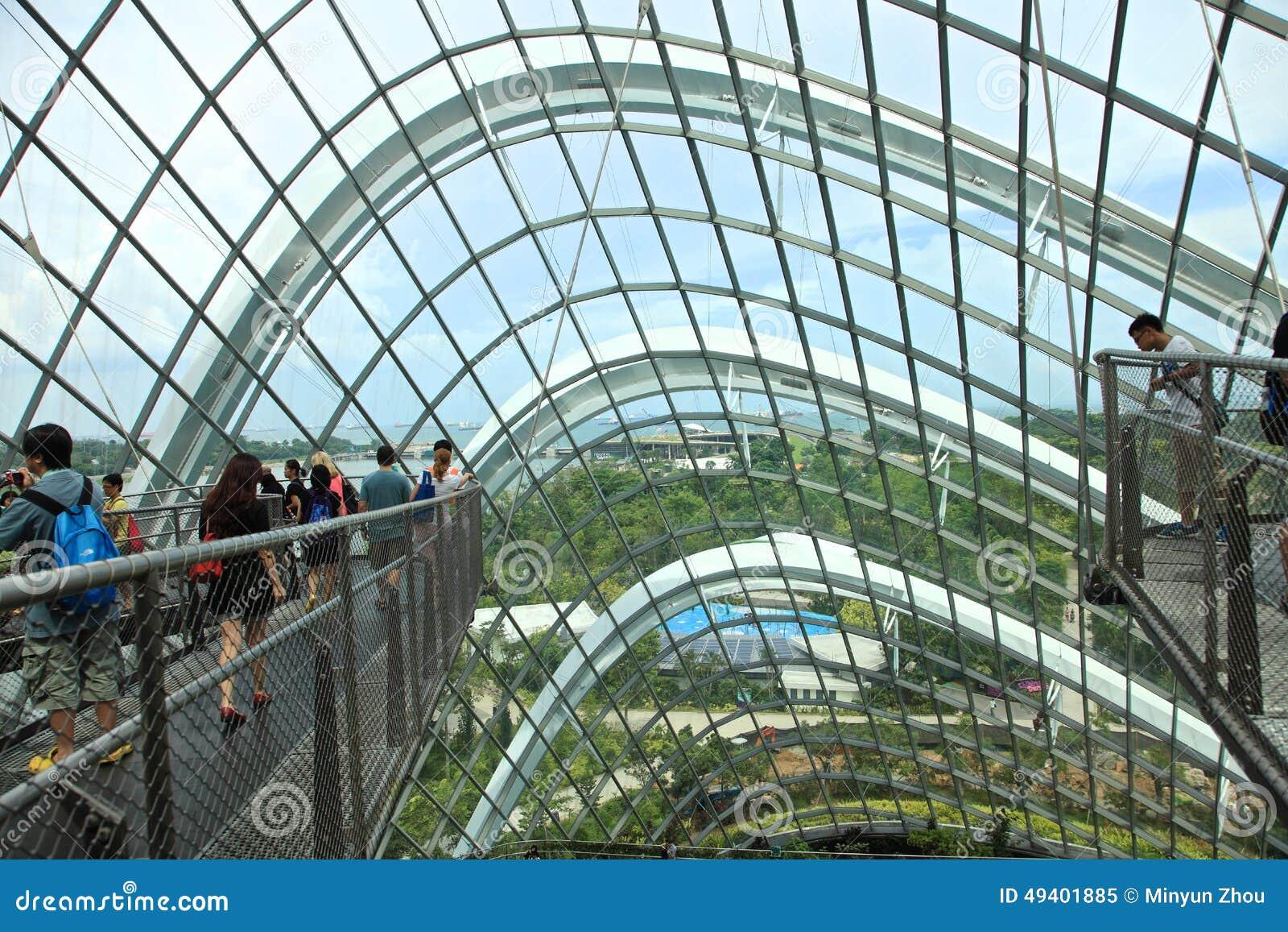 Download Wolken-Wald, Gärten Durch Den Schacht Redaktionelles Bild - Bild von zieleinheit, hintergrund: 49401885
