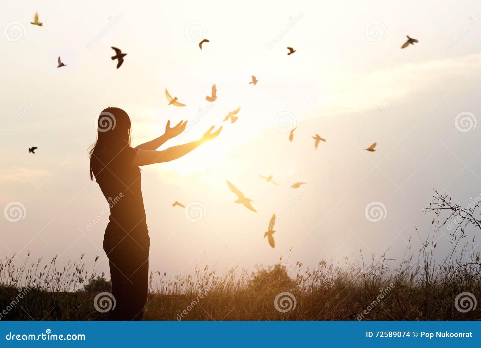 Wolność życie, bezpłatny ptak i kobieta cieszy się naturę na zmierzchu,