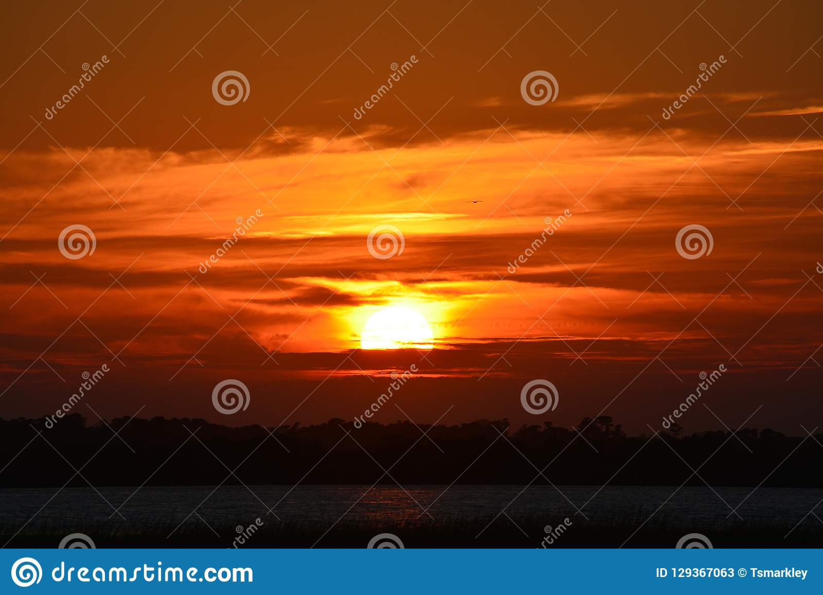 Wolny przyzwoicie słońce