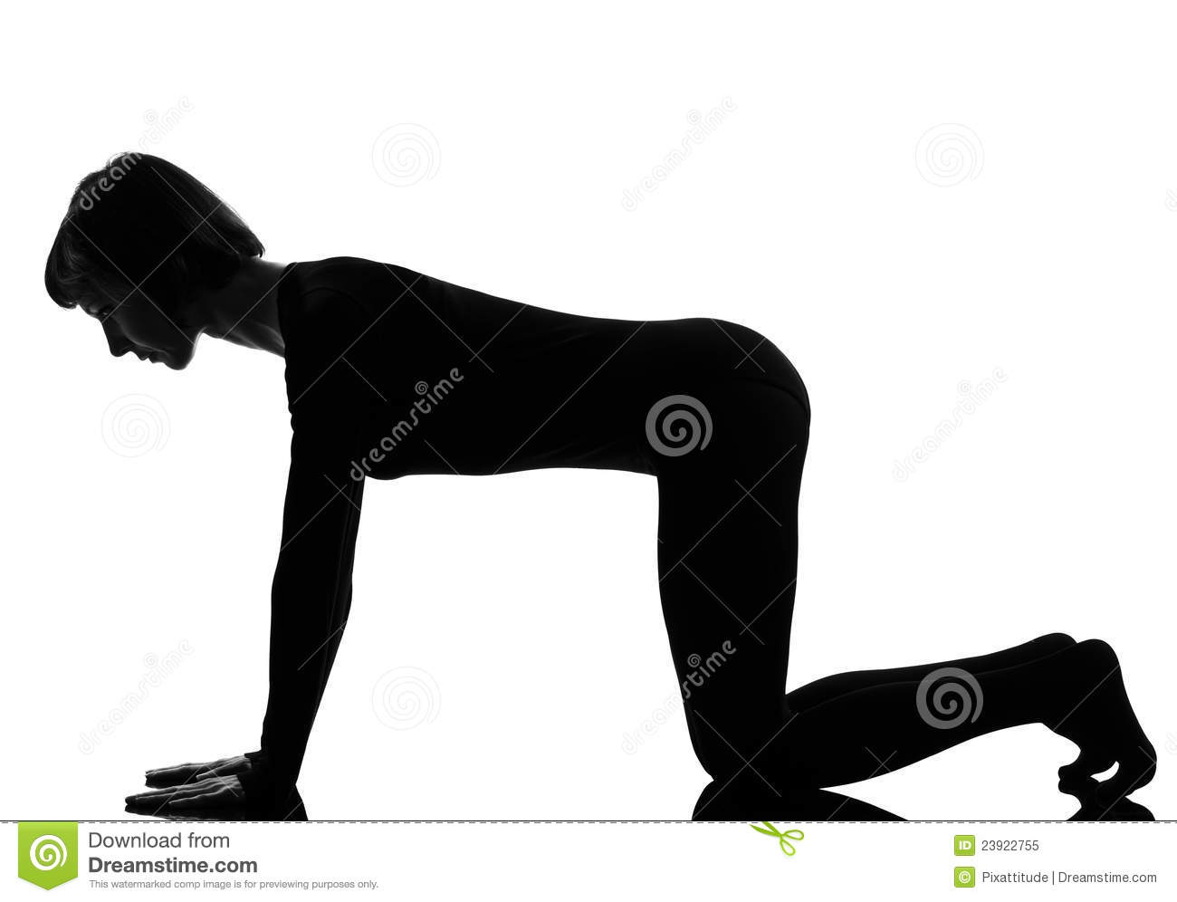 stance stand sex Position