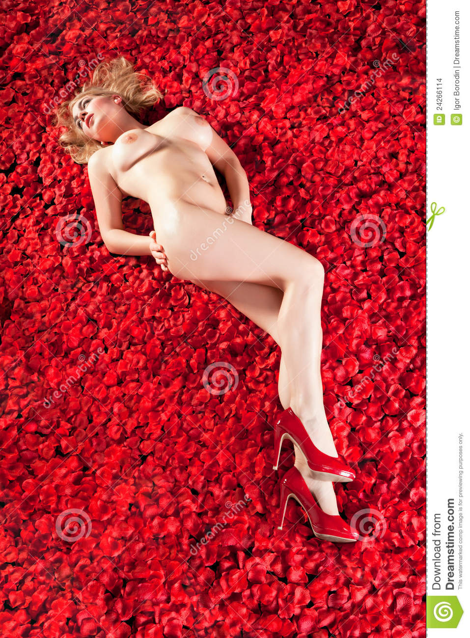 Stock Images Woman On A Bed Of Rose Petals