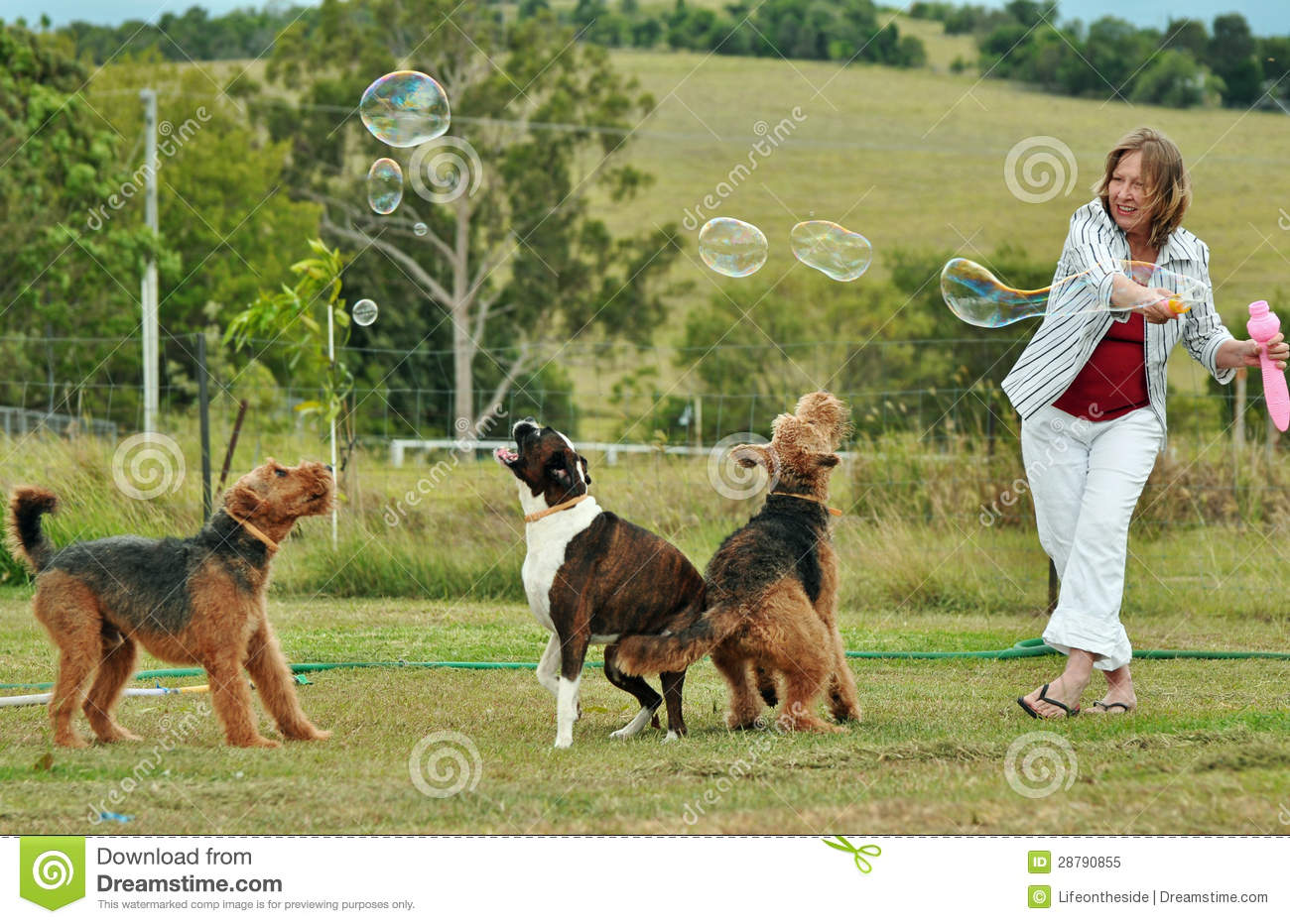 Woman blowing bubbles playing with her dogs