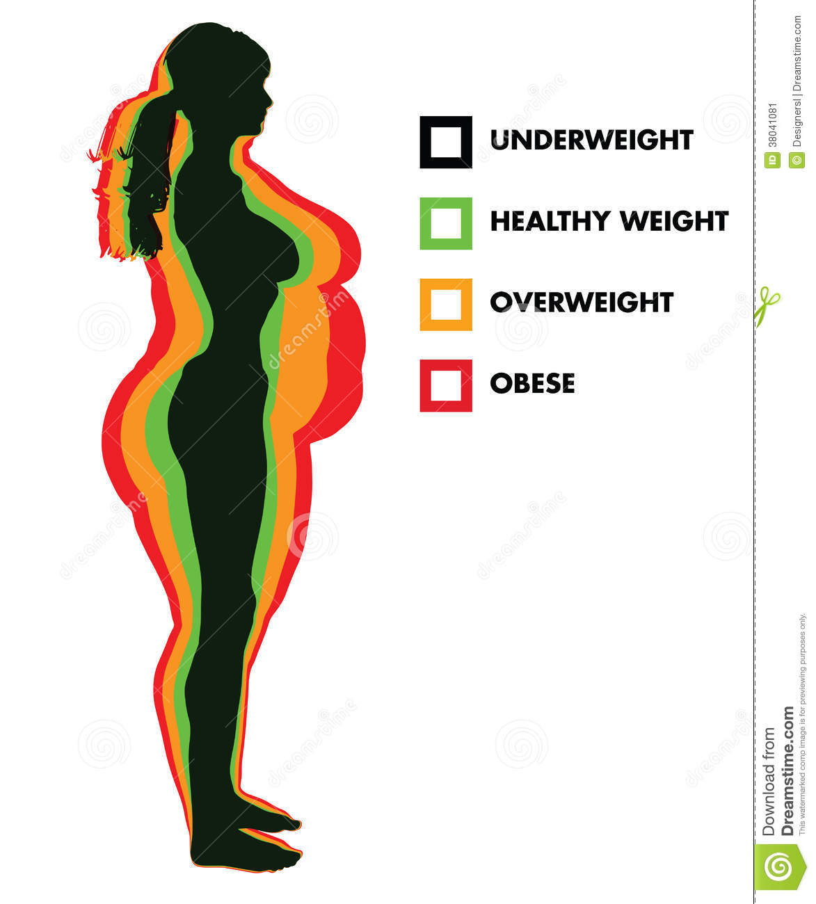 Body Mass Index Is It Reliable Indicator Of Obesity: Woman Body Mass Index BMI Categories Stock Vector
