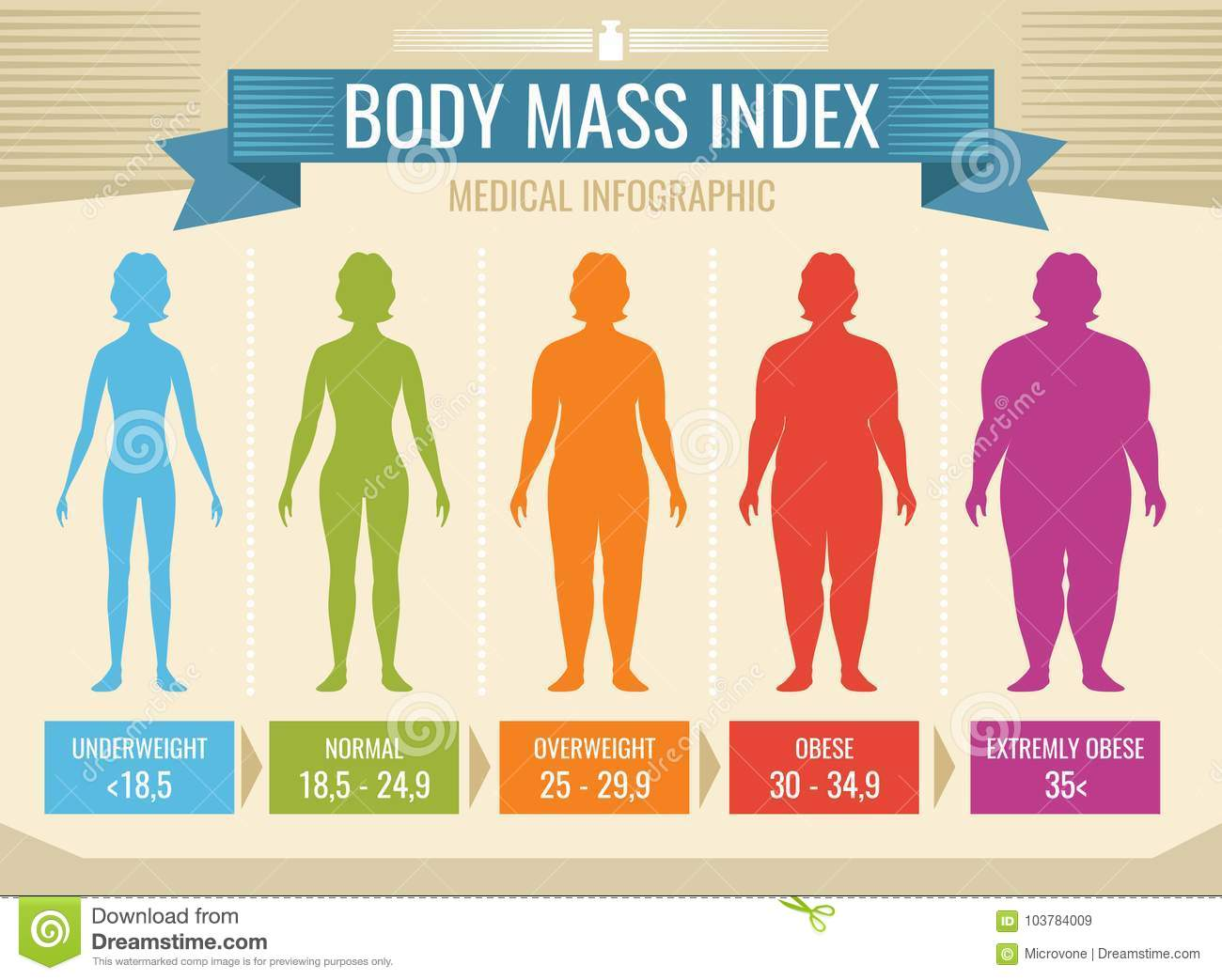 woman body mass index vector medical infographic stock vector