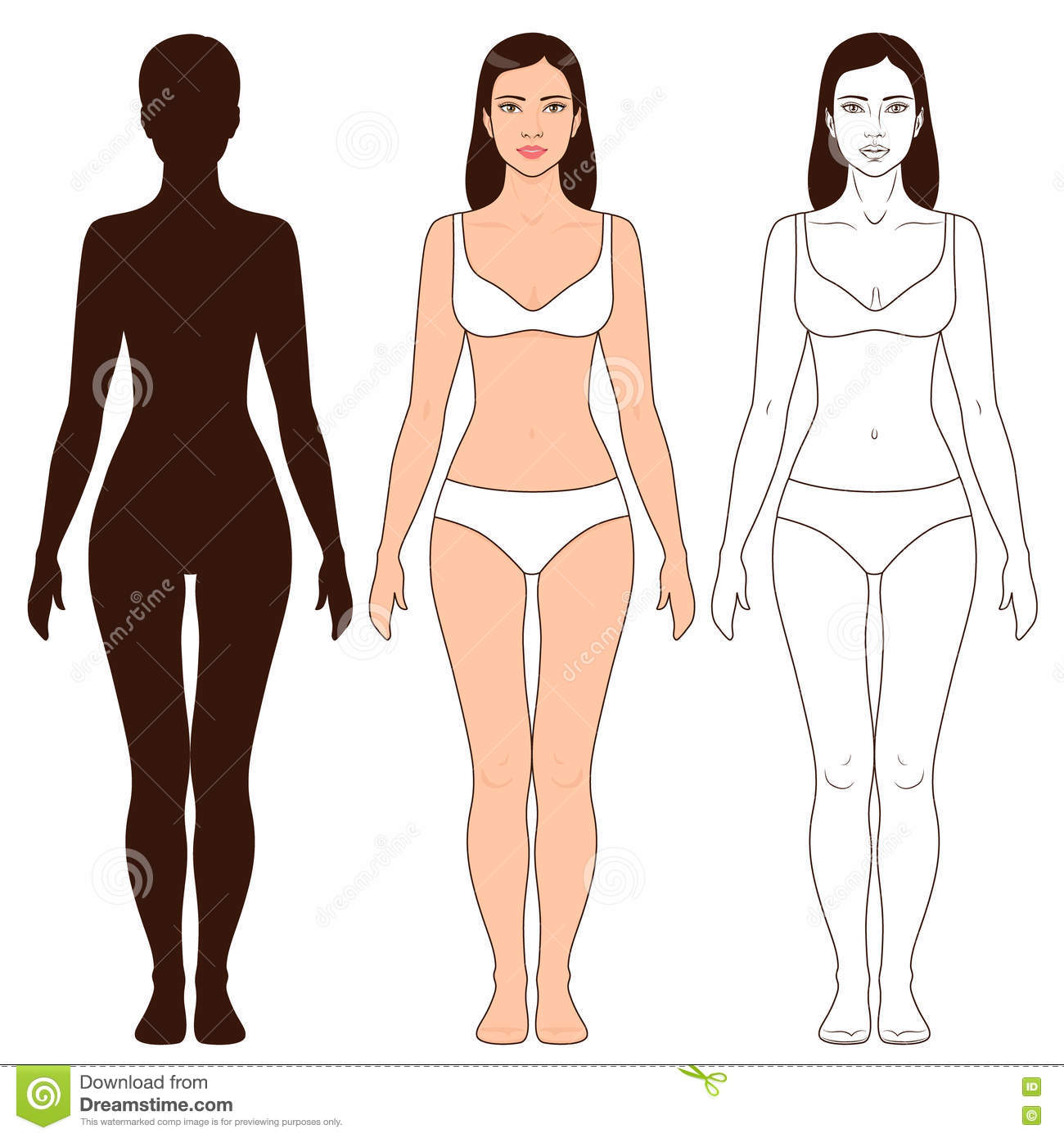 Woman Body Shape And Silhouette Template Stock Vector - Illustration ...