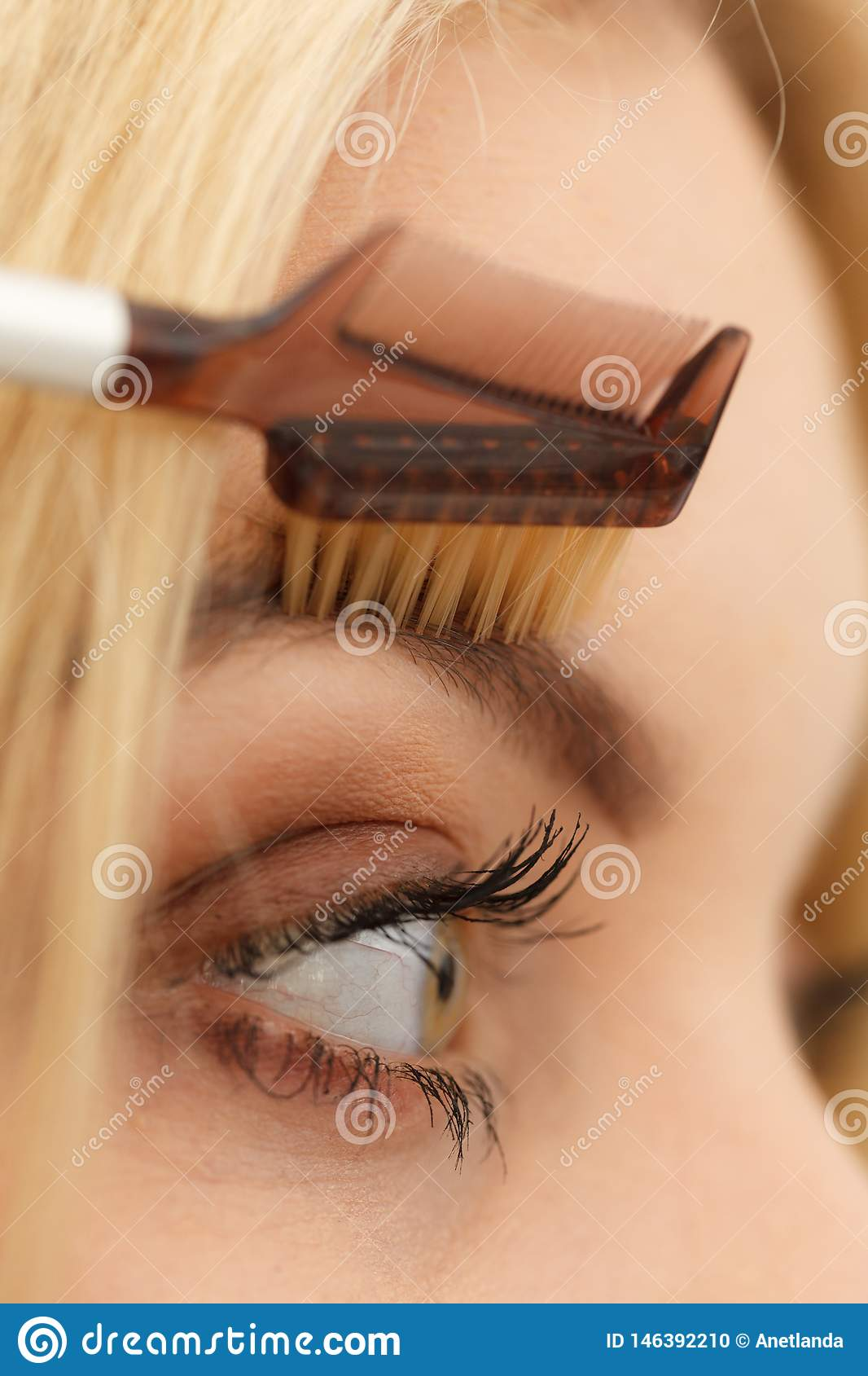 Woman Brushing Her Eyebrows Stock Photo - Image of young ...
