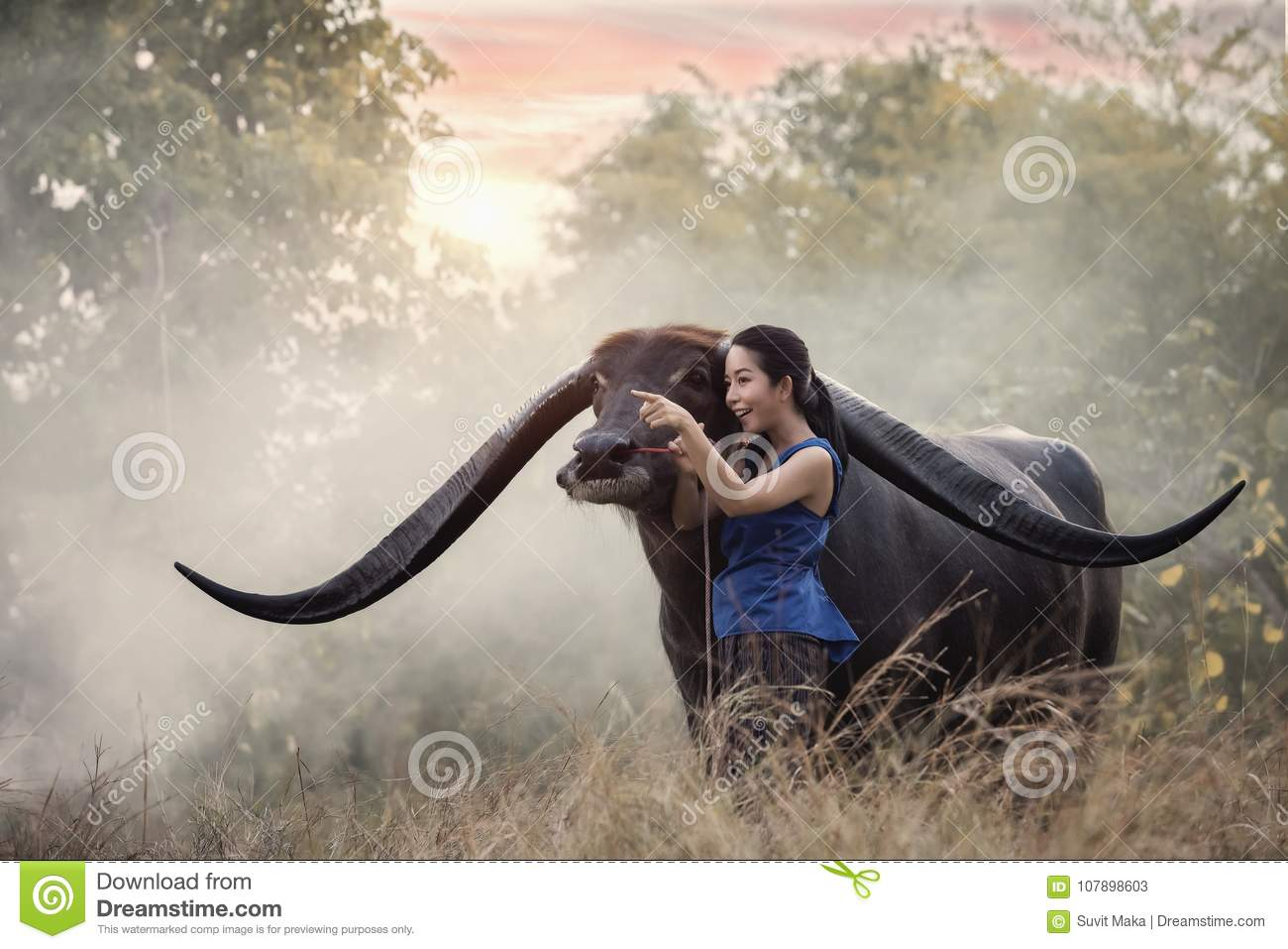 Woman with Buffalo in thailand