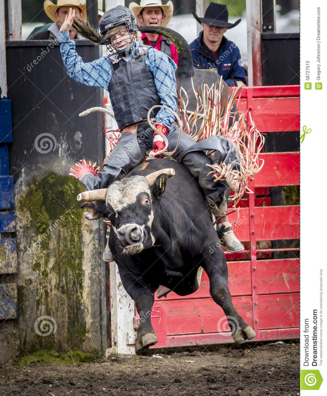 women bull riders pictures