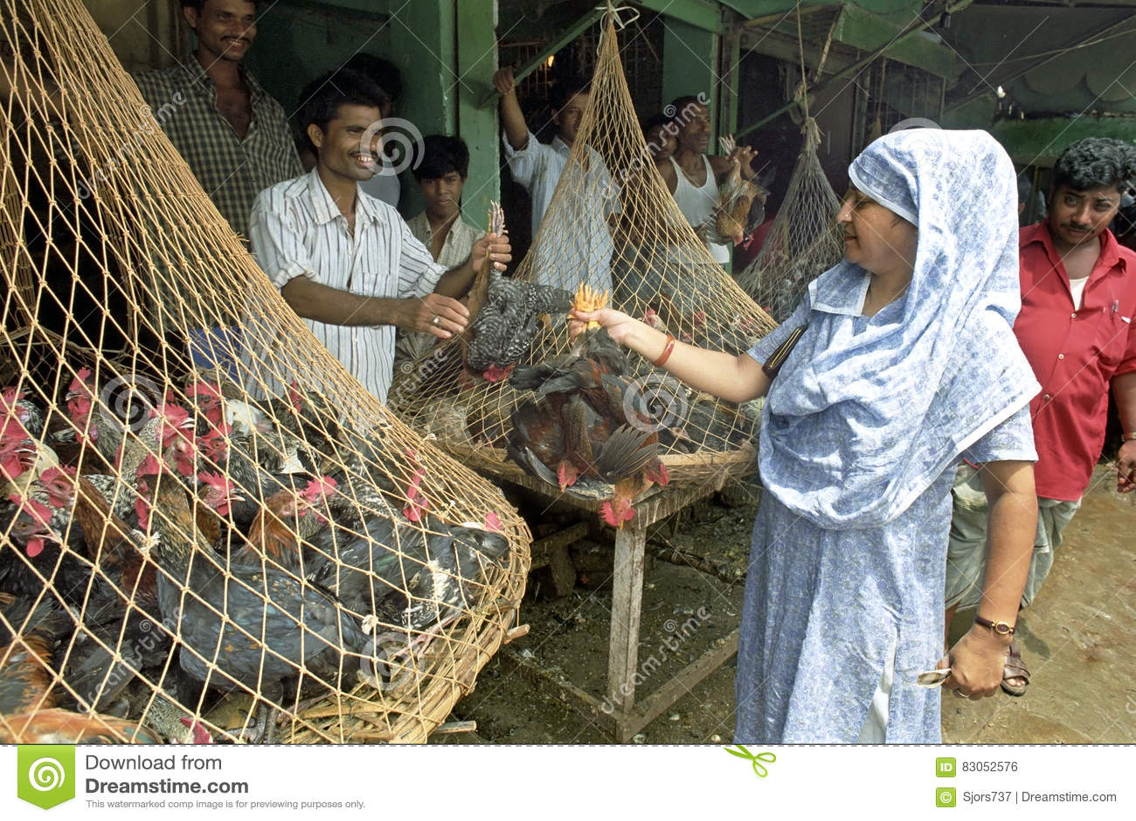 poultry farming business plan in bangladesh dhaka