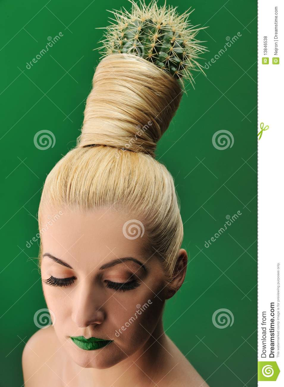 woman with cactus in her hair royalty free stock photos image 13846538. Black Bedroom Furniture Sets. Home Design Ideas