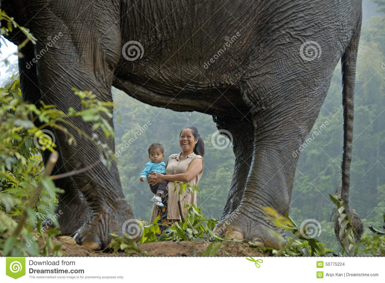 Woman child and elephant in jingle