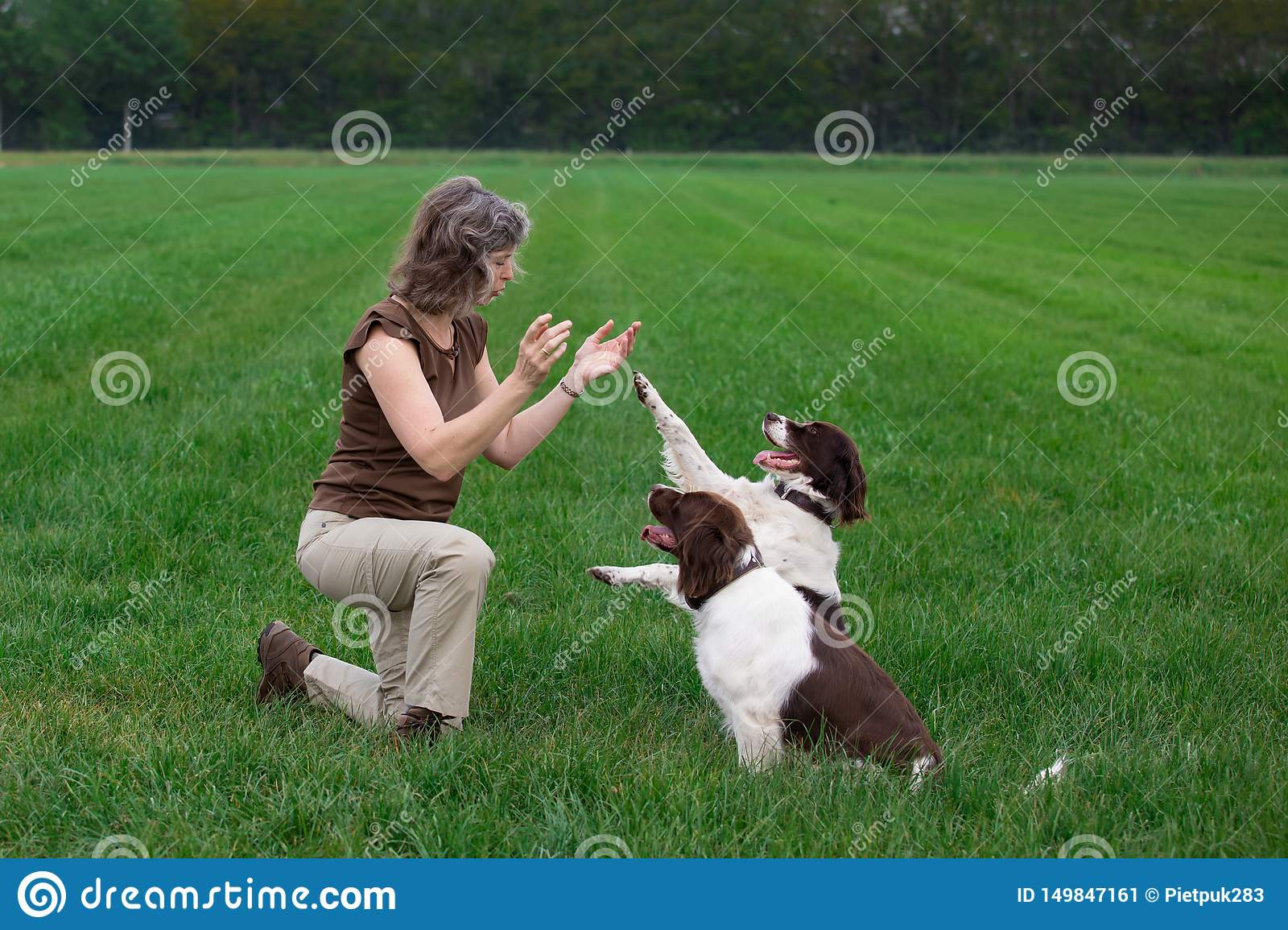 Woman clapping hands for dogs which give her a paw