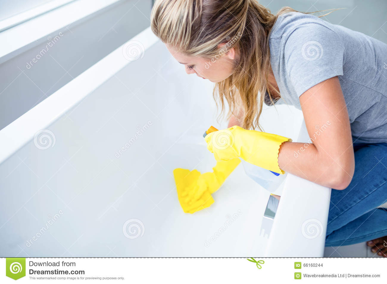 Woman Cleaning The Bath Tub Stock Photo Image 66160244