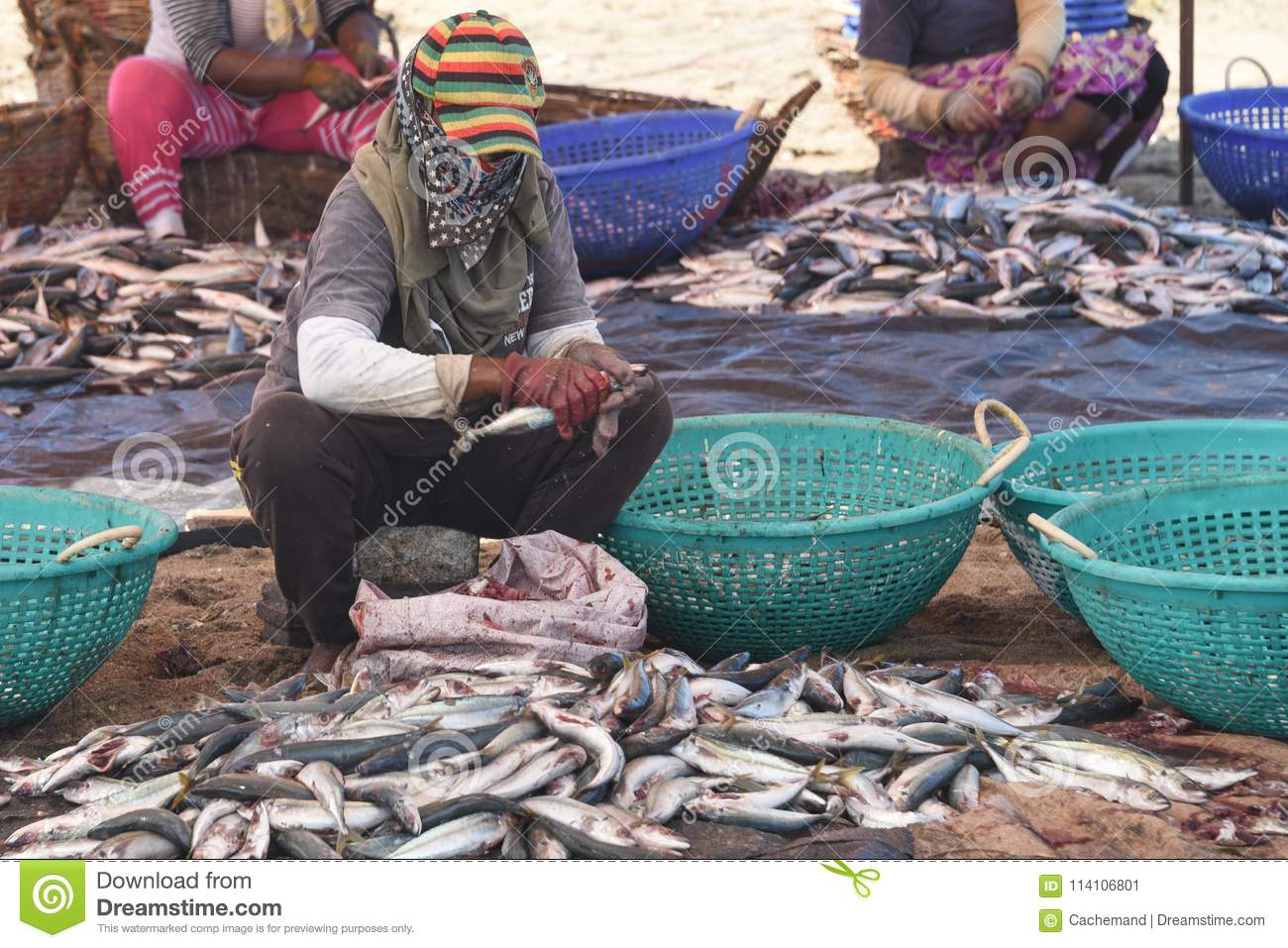 A West Indian woman cleaning flying fish at the market
