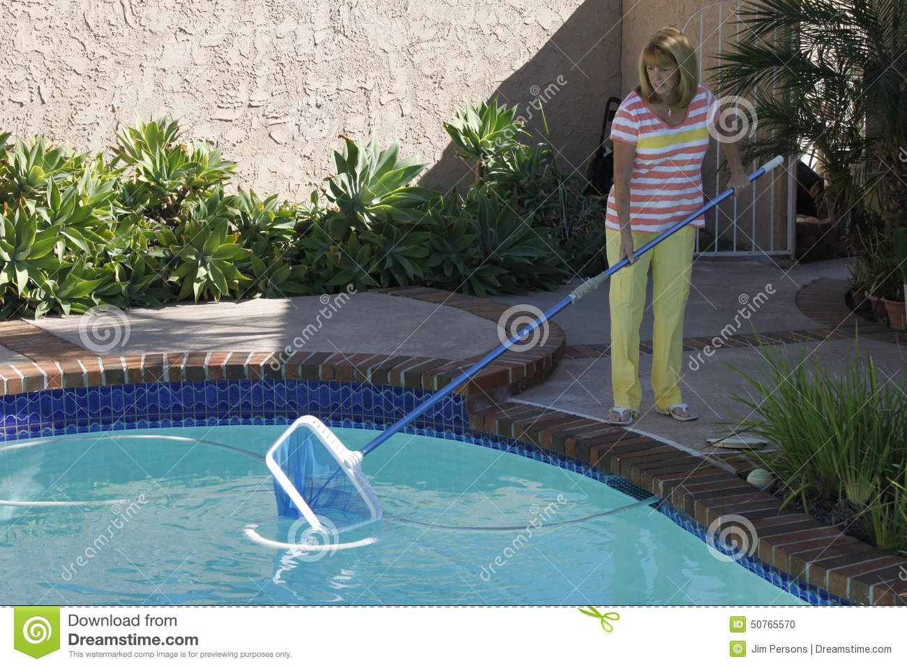 Swimming Pool Cleaning Net : Woman cleaning swimming pool royalty free stock