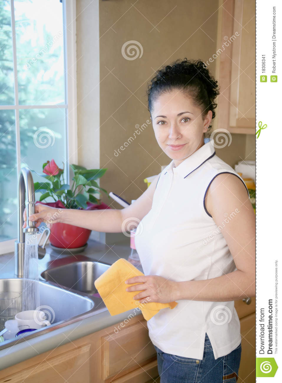 Woman Cleaning In The Kitchen Stock Image Image