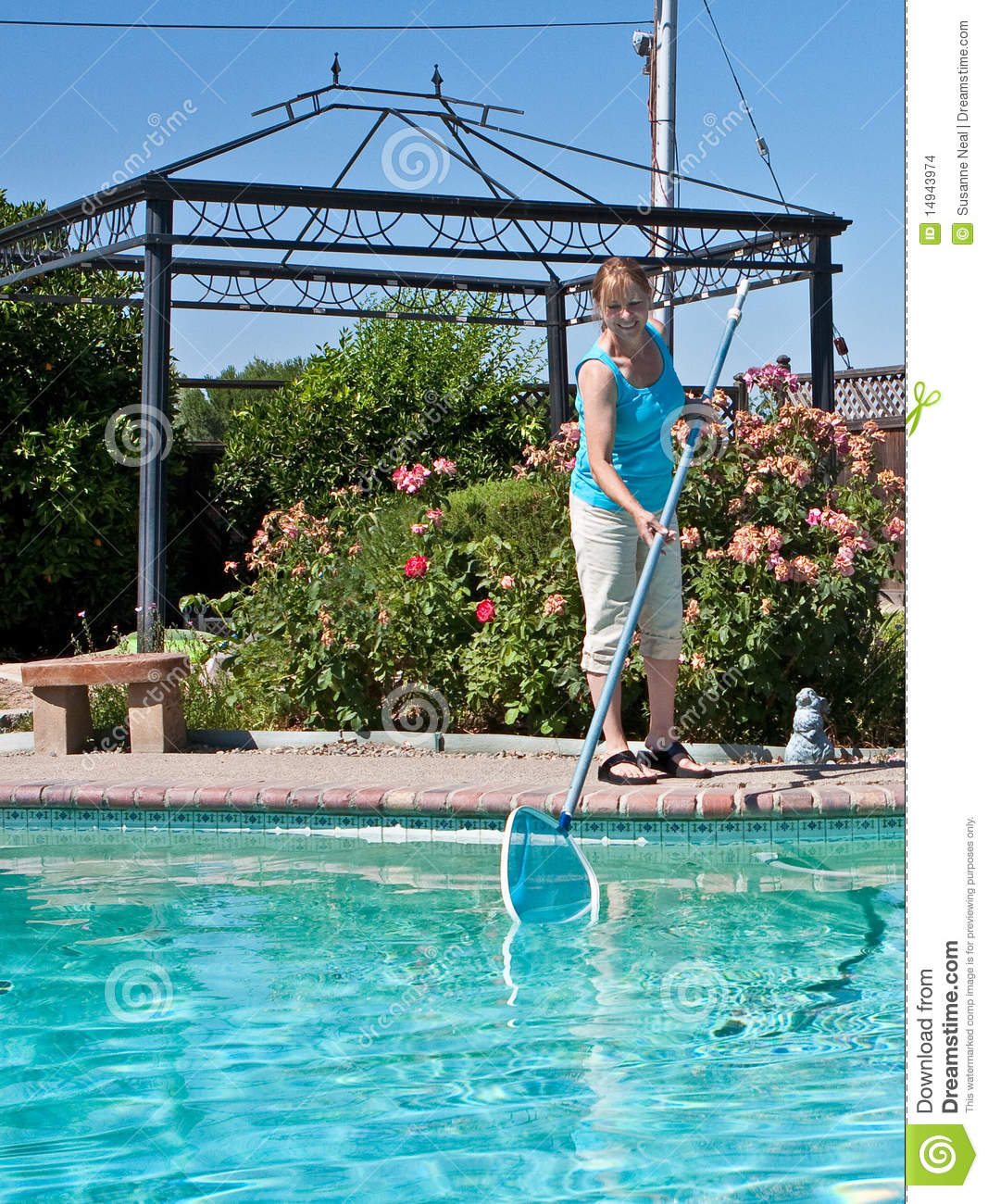 Cleaning Swimming Pools : Woman cleaning swimming pool stock images image