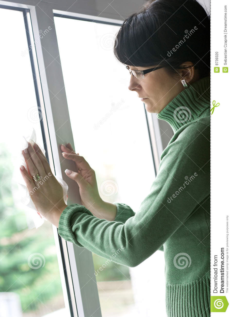 Woman Cleaning Window Stock Photo Image 8739320