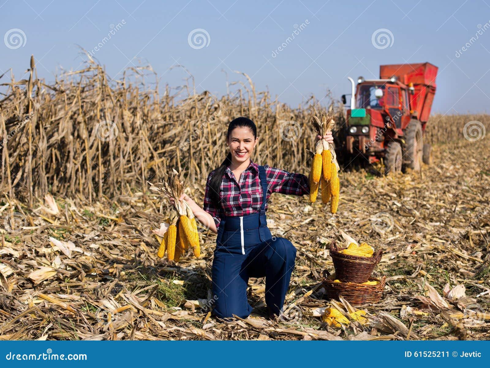 Woman In Corn Field Stock Photo - Image: 61525211