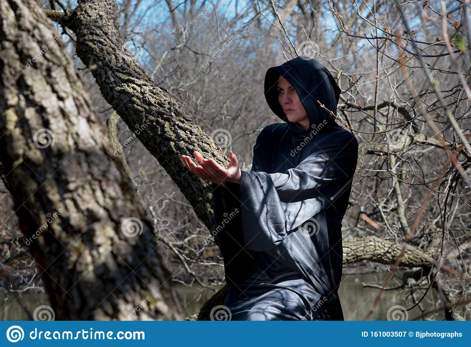 Woman With Dark Long Hair In Black Robes Hanging On Tree Branches In The Middle Of A Swamp Halloween And Gothic Concept Stock Image Image Of Divination Fantasy 161003507