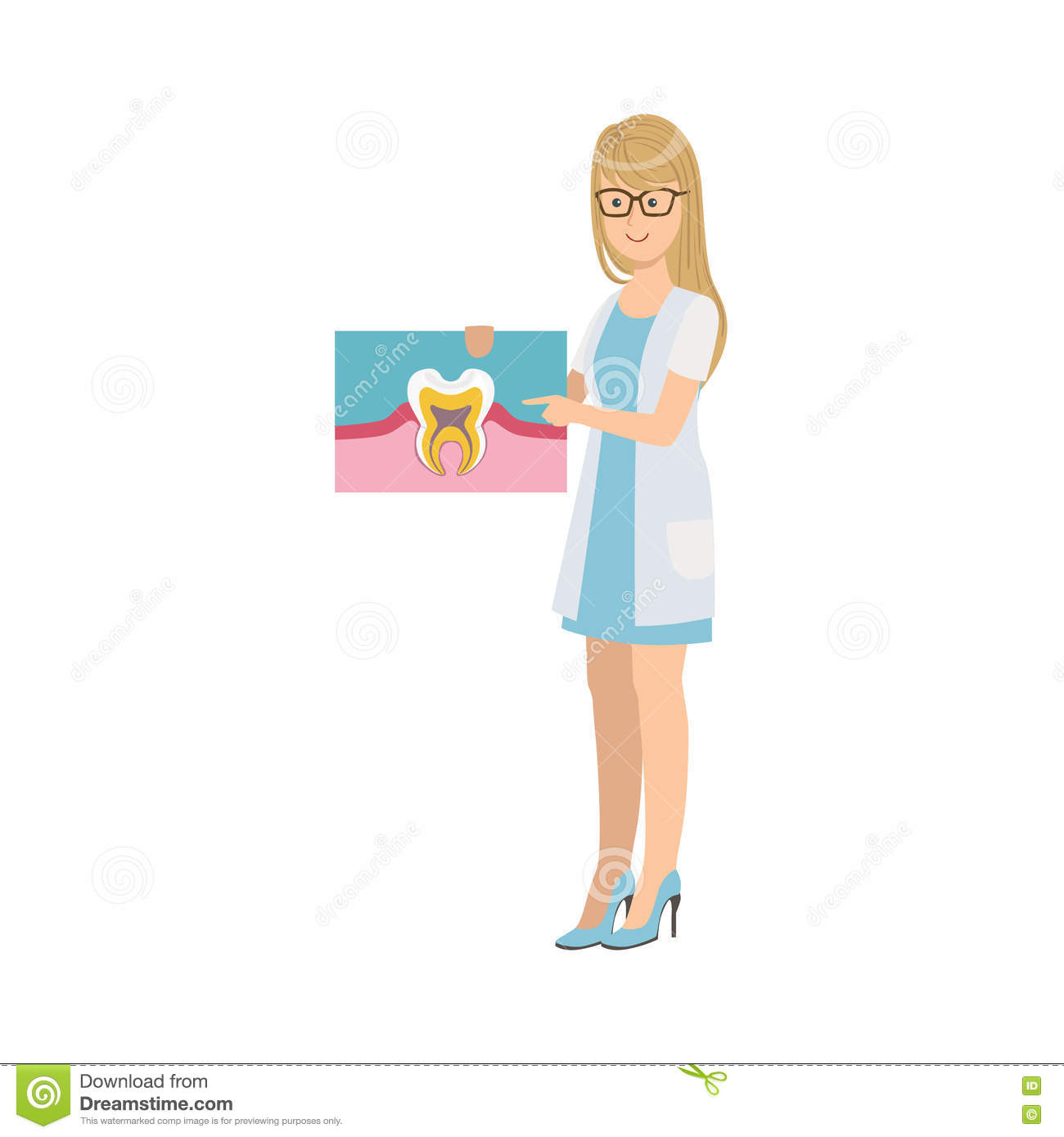 Woman Dentist In White Gown Holding Tooth Anatomy Drawing Stock ...