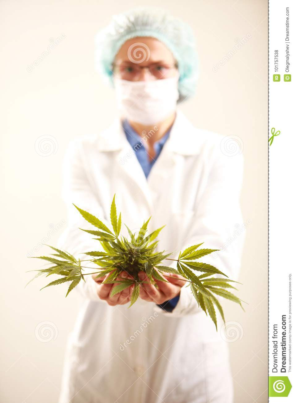 Woman Doctor Holding A Cannabis Leaf And Oil alternative