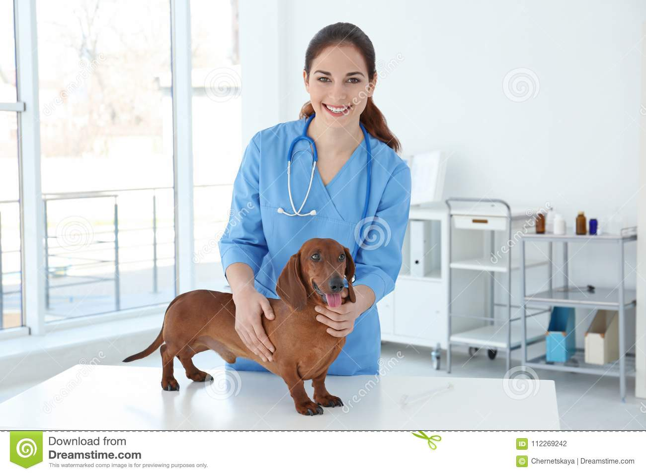 Woman with dog in veterinarian clinic