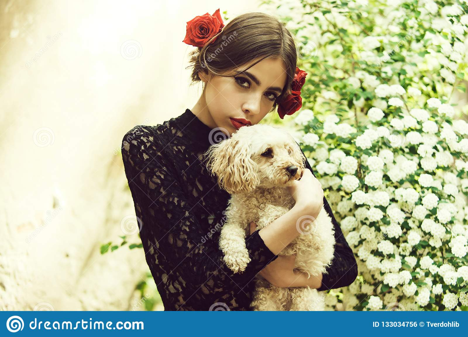 Woman Hold Dog With Spanish Makeup Rose In Hair Stock Photo Image