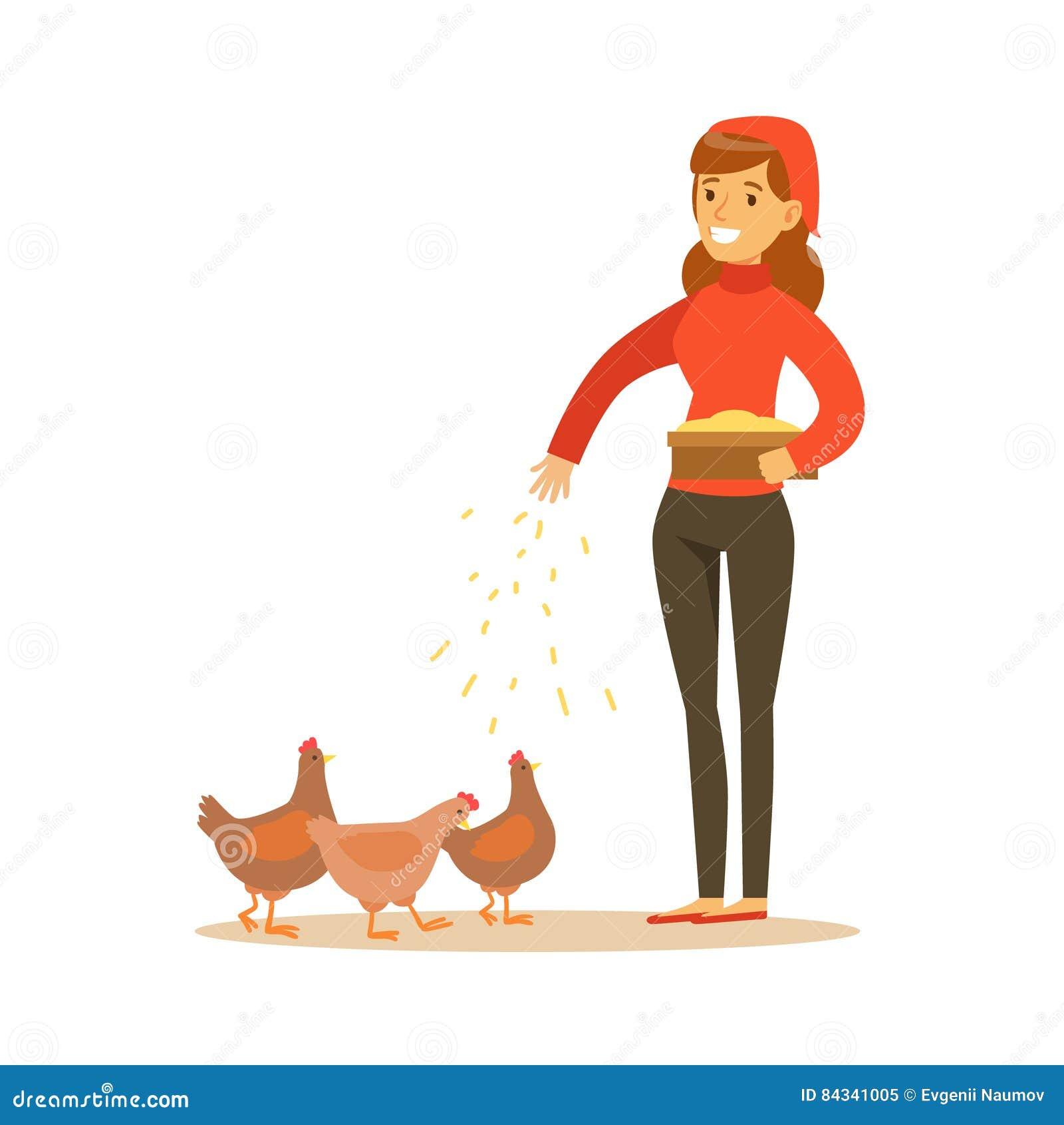 Farmer Feeding The Chickens Stock Photo | CartoonDealer ...