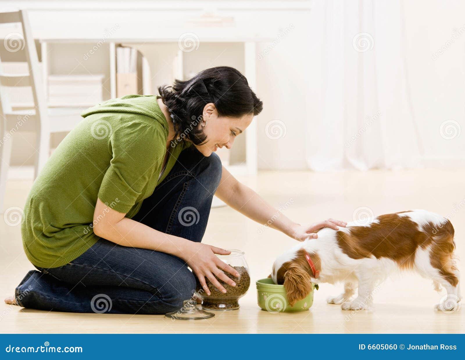 Woman Feeding Dog Stock Photo Image 6605060