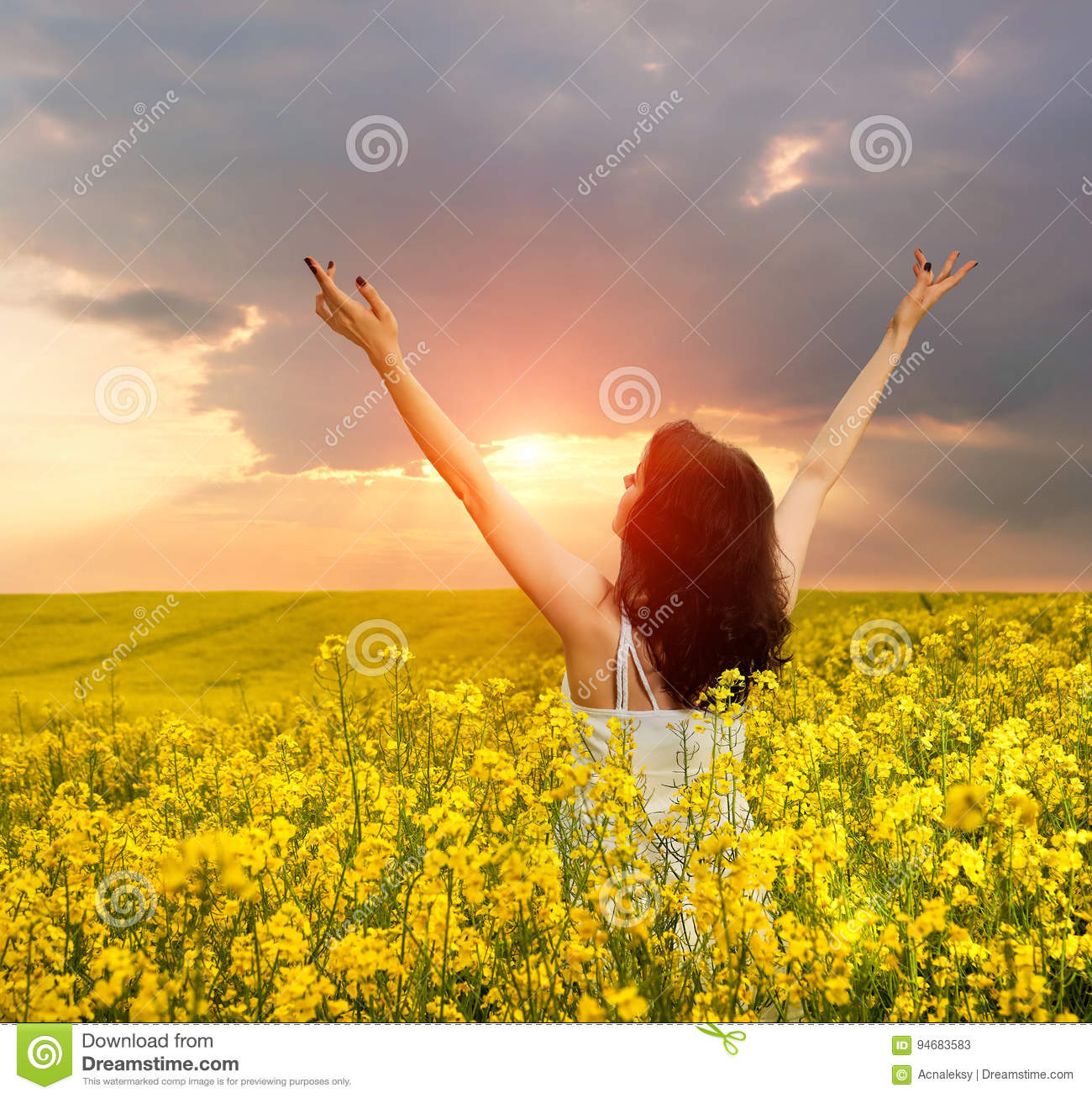 Woman In Field With Flowers At Summer Sunset Stock Image Image Of